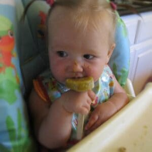 Baby Food Popsicles