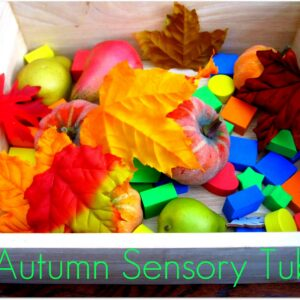 Baby Playtime- Autumn Sensory Tub
