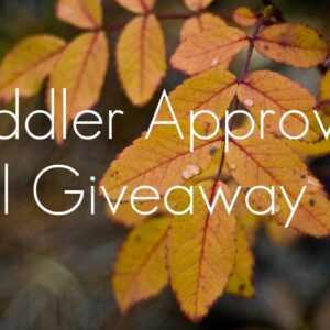 Toddler Approved Fall Giveaway-NOW CLOSED!!!