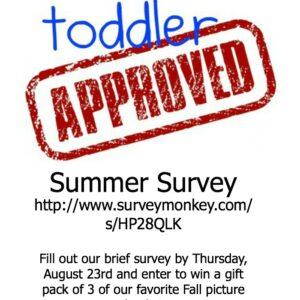 Toddler Approved Summer Survey Giveaway Winner!