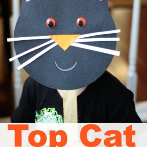 Top Cat Mask Craft