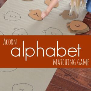Acorn Alphabet Matching Game