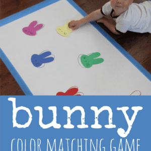 Bunny Color Matching Game