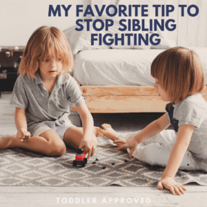 My Favorite Tip to Stop Sibling Fighting
