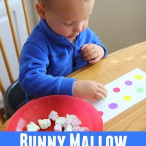 Bunny Marshmallow Color Matching