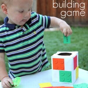 LEGO Pick & Move Building Game