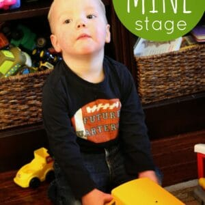 "Tips for the Toddler ""MINE"" stage."