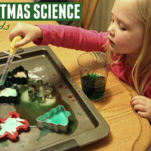 Toddler Christmas Science