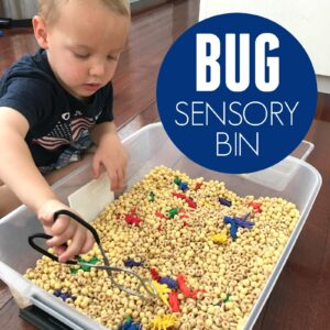 Awesome Quick to Make Bug Sensory Bin for Kids