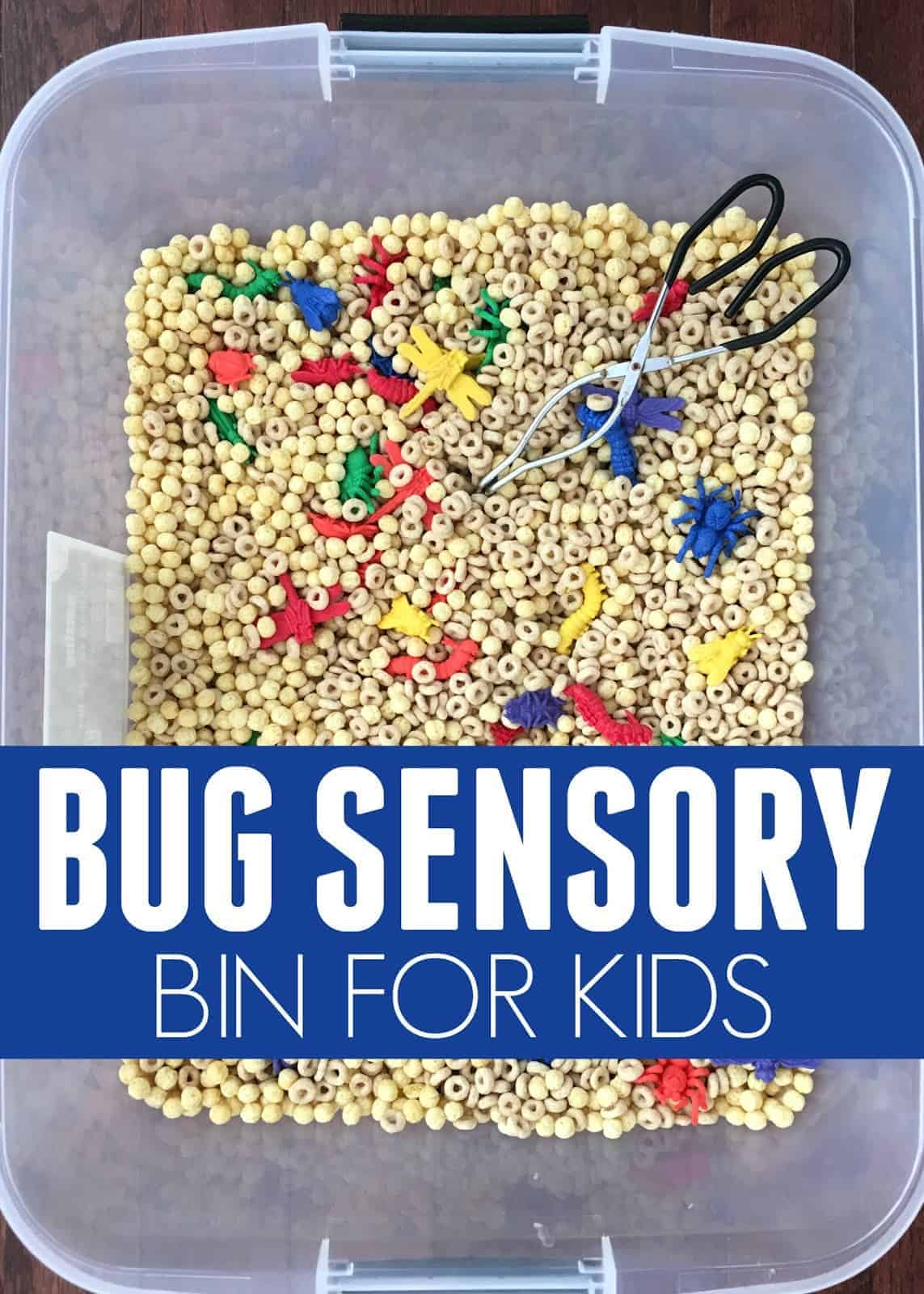quick to make insect sensory tub