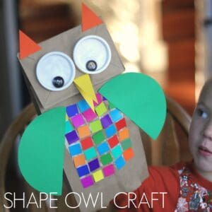 Colorful Shape Owl Craft for Kids