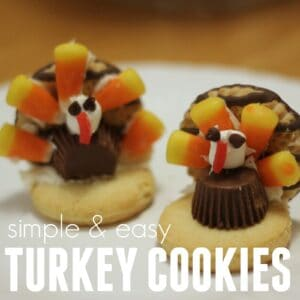 Super Simple Turkey Cookies for Kids