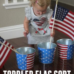 Toddler Flag Sort ~ A Fourth of July Transfer Activity