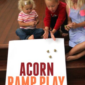 Acorn Ramp Play for Toddlers