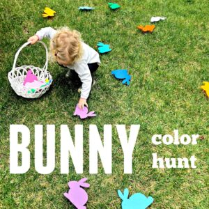 Bunny Color Hunt for Toddlers