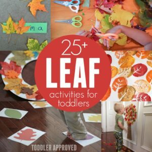 25+ Leaf Activities for Toddlers