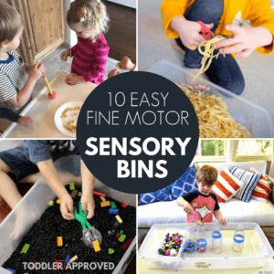 10 Incredibly Easy Fine Motor Sensory Bins for Toddlers!