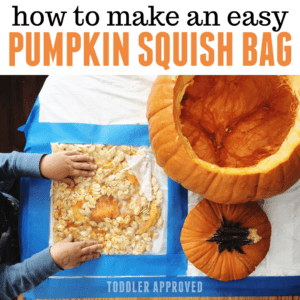 Pumpkin Squish Bag for Toddlers