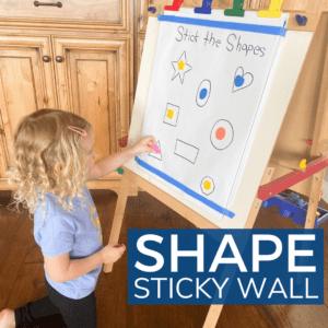 Shape Sorting Activity for Preschoolers